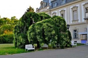 Такие цветочные сооружения популярны в западной Европе.