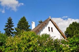 Соломенные крыши встретил только в этой деревне