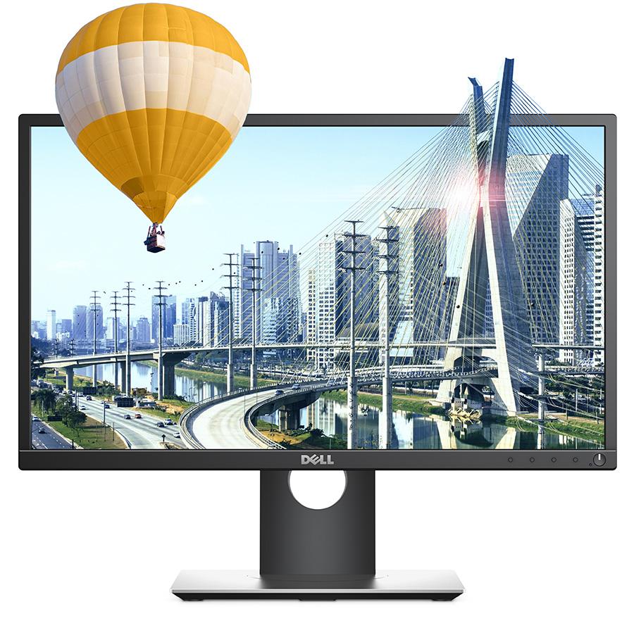 Dell 22 (Model P2217H) 22-inch monitor.
